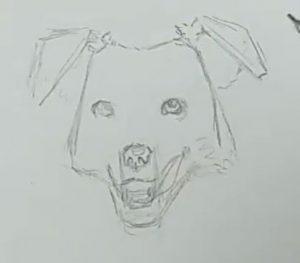 Hund zeichnen Schritt 5