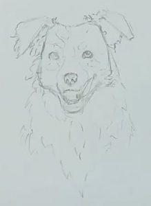 Hund zeichnen Schritt 6