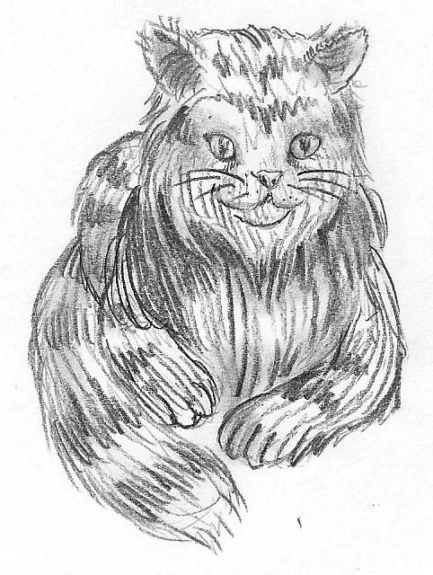 Katze malen & Katze zeichnen
