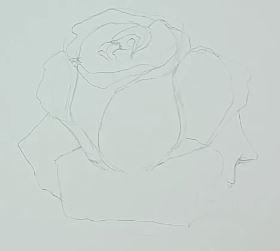 Rose Zeichnen Schritt Für Schritt Tutorial Zeichne Meisterhaft