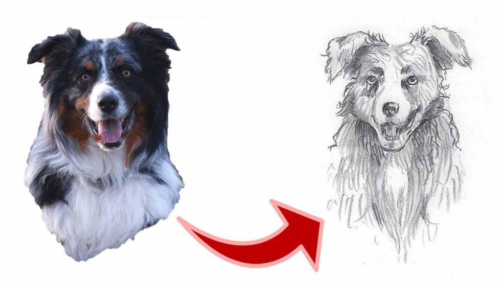 Hund zeichnen Thumbnail